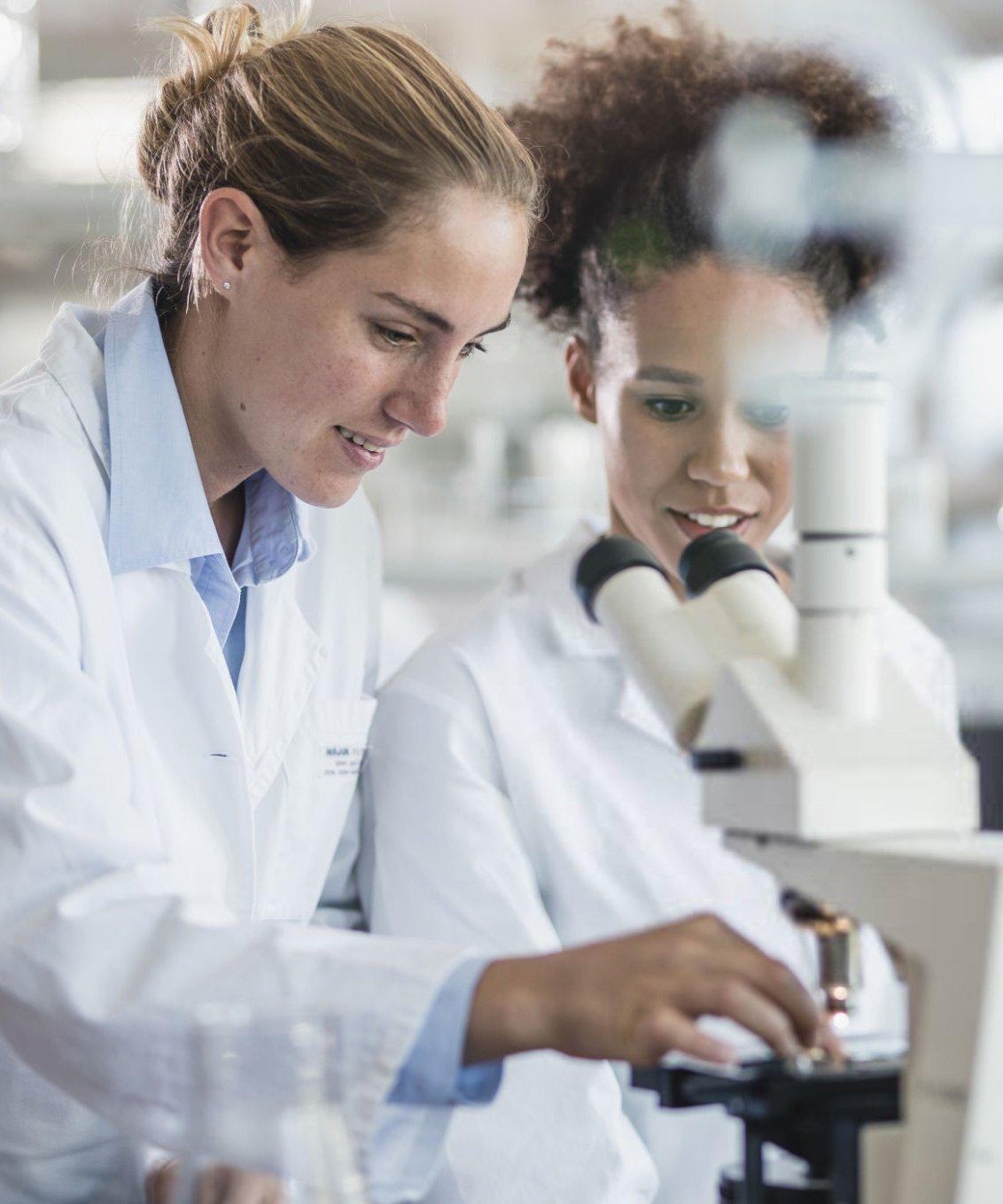 laboratorio-cms-cientifica---