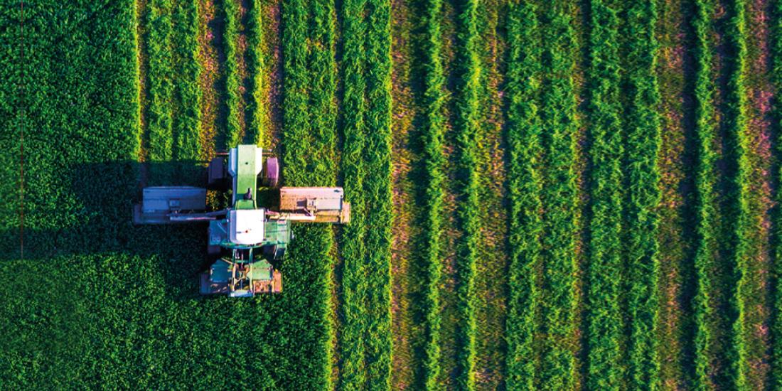 Agrônomos temem perder terras para novas zonas livres de pesticidas