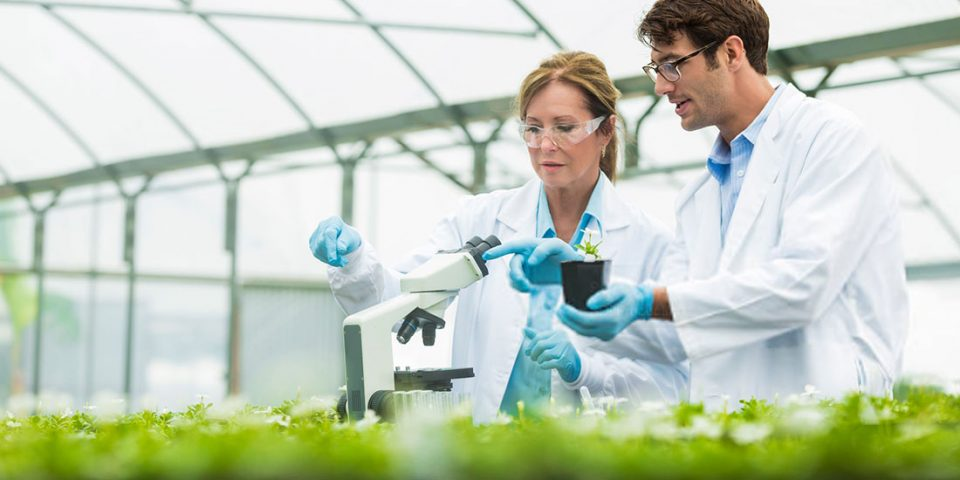 Neonicotinoides,-materiais-de-referência-para-monitoramento-em-laboratório