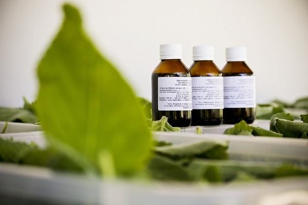 Analise de agrotoxicos em fitoterapicos - CMS